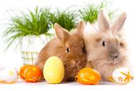 Fototapety na Wielkanoc
