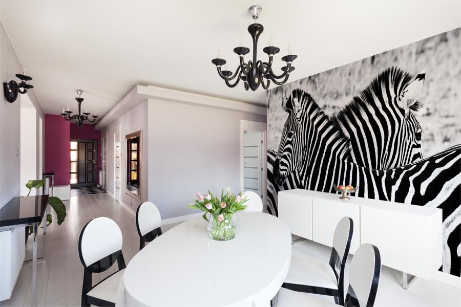 Fototapeta zebra w glamour